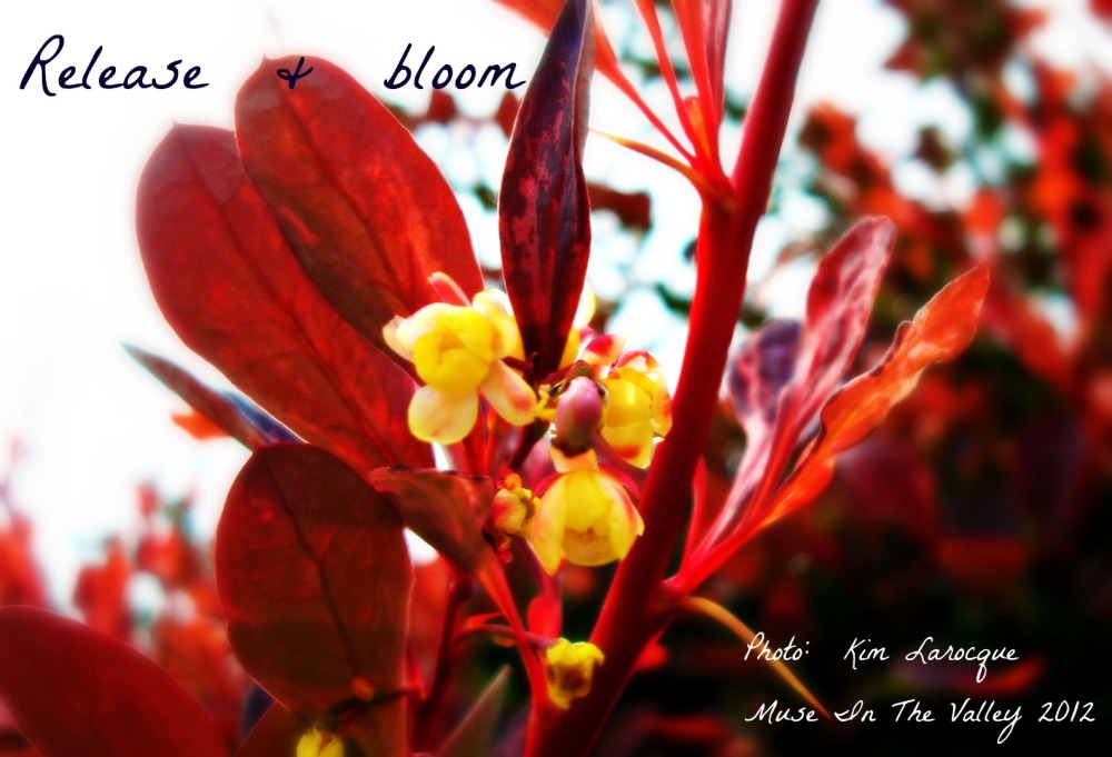 Today - A Short Poem (1/2)