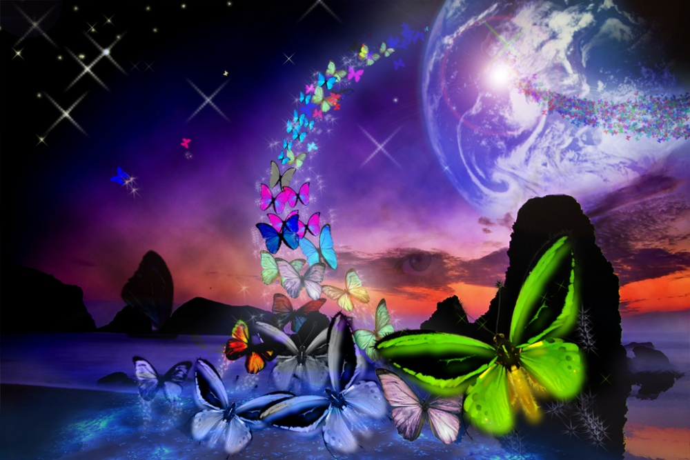 The Wolf's Whisper and The Butterfly's Flight (3/4)