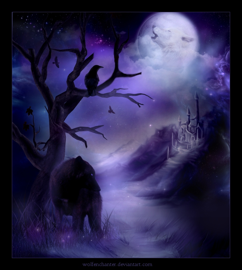 The Wolf's Whisper and The Butterfly's Flight (2/4)